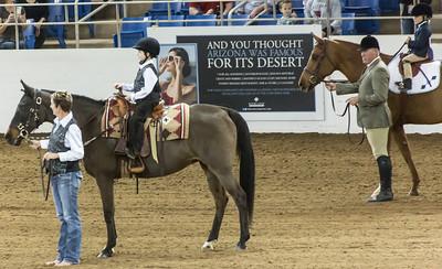 Scottsdale Arabian Horse ShowFebruary 13 2016 002