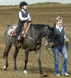 Scottsdale Arabian Horse ShowFebruary 13 2016 004