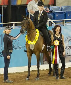 Scottsdale Arabian Horse ShowFebruary 13 2016 017