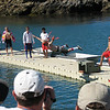 Time for event #5, the Scoutmaster Belly Flop. As you can see, they don't just jump off the dock, they jump off this elevated platform. I would've gotten a nosebleed for sure.<br /> This, by the way, is a staff member, which you can identify by their socks.
