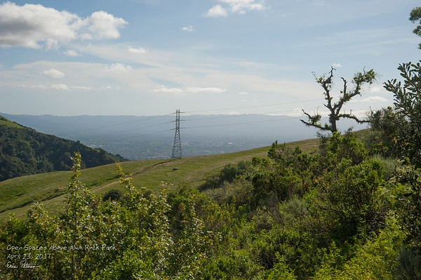 Hiking above Alum Rock Park.  4/23/2017