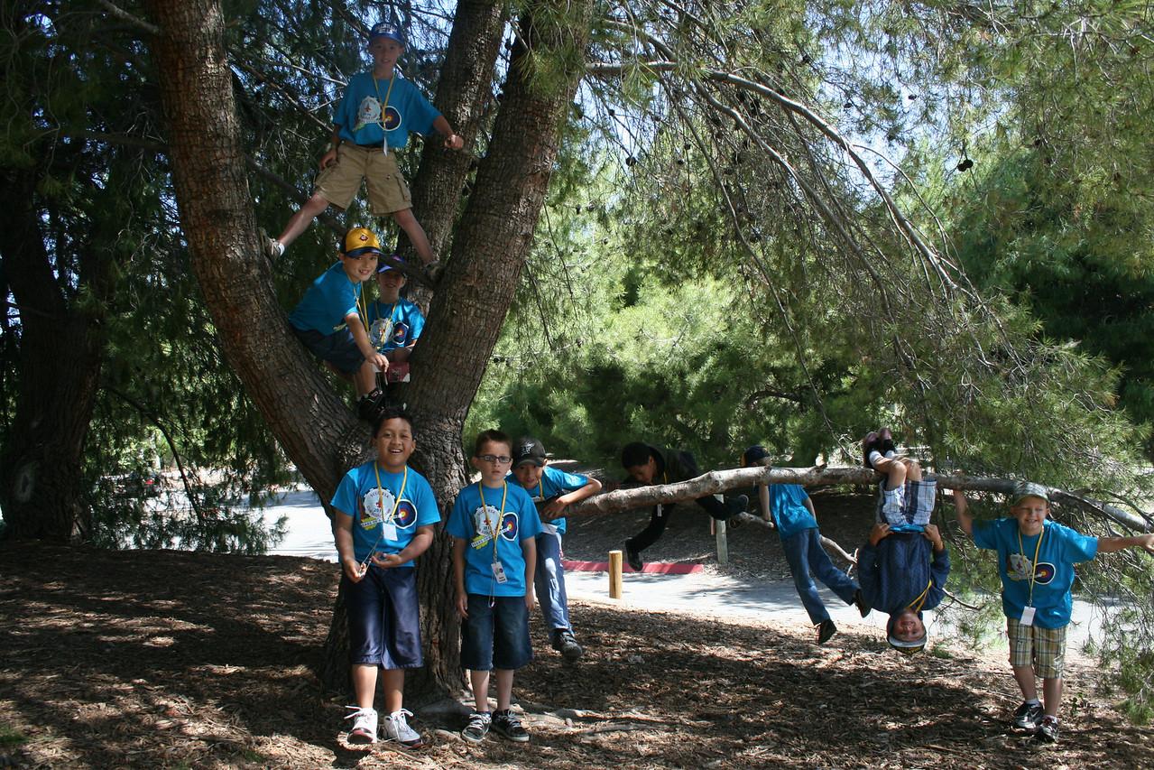 Scout Camp 2010 016