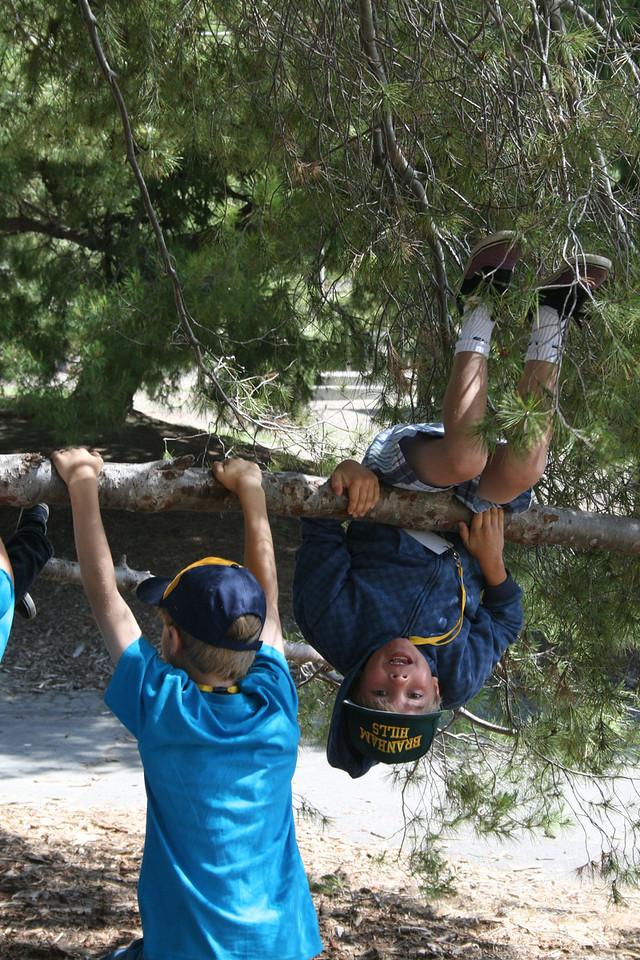 Scout Camp 2010 015