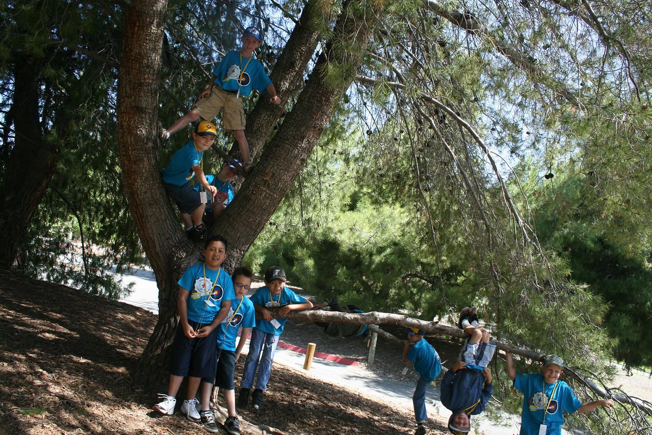 Scout Camp 2010 017