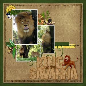 Expedition Safari- Kellybell Designs