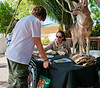 Angeline Scotten seen here at a Florida Fish and Wildlife Commission display on the topic also gave a Safari Canyon talk on living with coyotes