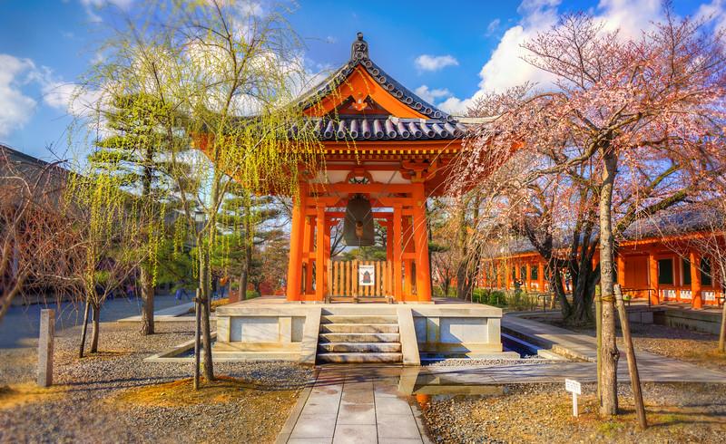 Sakura in Rengeō-in