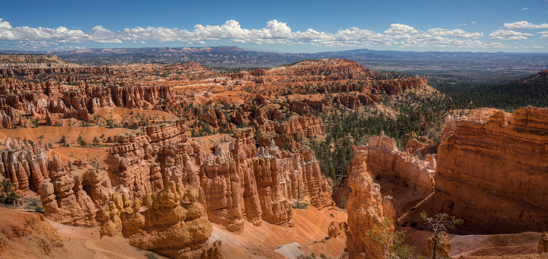A view into Bryce Canyon
