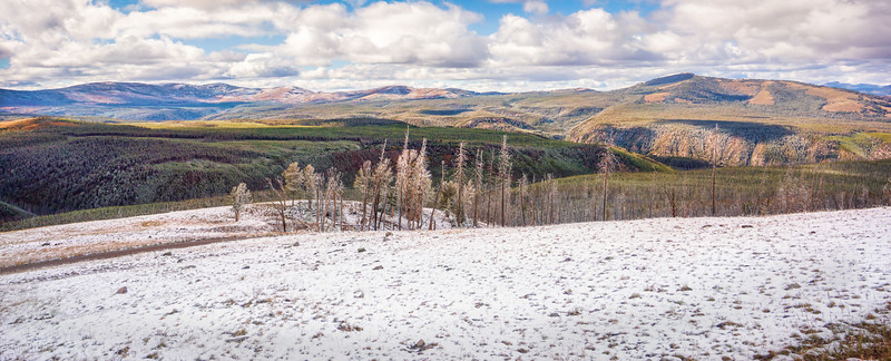 Snow on Mount Washburn