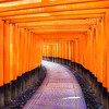Walking through Fushimi Inari-taisha