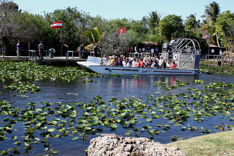 """Everglades airboat tour, watch out for """"gators"""""""