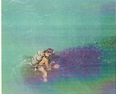 Robert Smith Album
