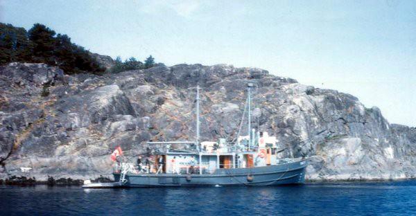 Winchelsea Island 1967