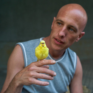 Little Yellow Bird on Robert.  (Zeiss ZM 35/2.0, probably at f/4, on  M8)