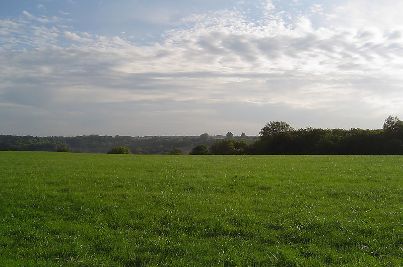 View towards Whyteleafe - 004