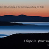 """""""Mono Lake  and Paoha Island at Dawn"""""""