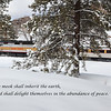 """Grand Canyon Railway Train in Winter"""