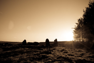 "[Week 1: 1st-7th Jan]  The Aikey Brae stone circle (57° 30' 50.87"" N 2° 4' 6.4"" W). We all went for a nice walk there before a late lunch. It was a fun day."