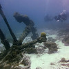 anchor n divers bonaire 090513