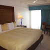 our room divi flamingo bonaire 083113