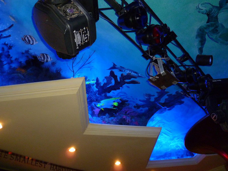 One of my favorite places in San Miguel is the Hard Rock Cafe in San Miguel (Try the pulled pork sandwich or the mac and chees with chicken.) The ceiling is painted as a reef scene from a divers point of view. The photos don't do it justice.