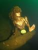Mermaid Marrisa.