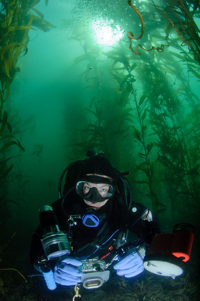 Andy in the beautiful giant kelp forest.