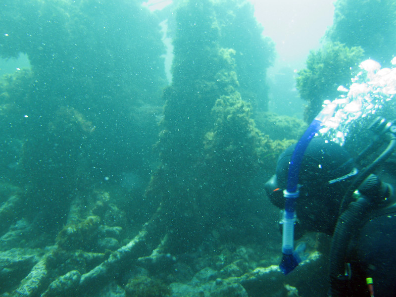 More of the paddle wheel shaft and hub from the Winfield Scott wreck.