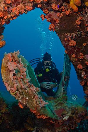 Bonaire's Hilma Hooker Wreck