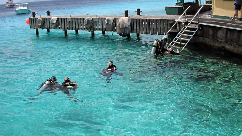 2011_Bonaire1911-L.jpg