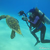 Hawksbill Turtle - Lori can't zoom out anymore!