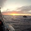 Manta Dive, Kona Hawai'i
