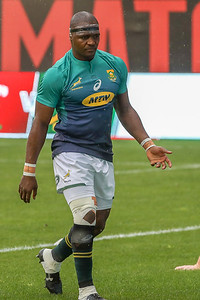 Rugby,South Africa,Wales