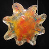 "<h2>Starburst</h2>cast glass with steel mounting bracket, glass inclusion and electric back light May, 2003 15"" x 14"" x 2"" This is part of a series of sun-like forms created in glass.  Energy and excitement radiate from this sculpture."