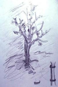 "<h2>Tree study</h2>graphite 8 1/2 "" x 11"" December,1999"