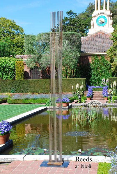 Reeds (Shown at Filoli in Woodside, CA)