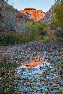 Reflection of Sentinel Rock from Pine Creek, Zion NP