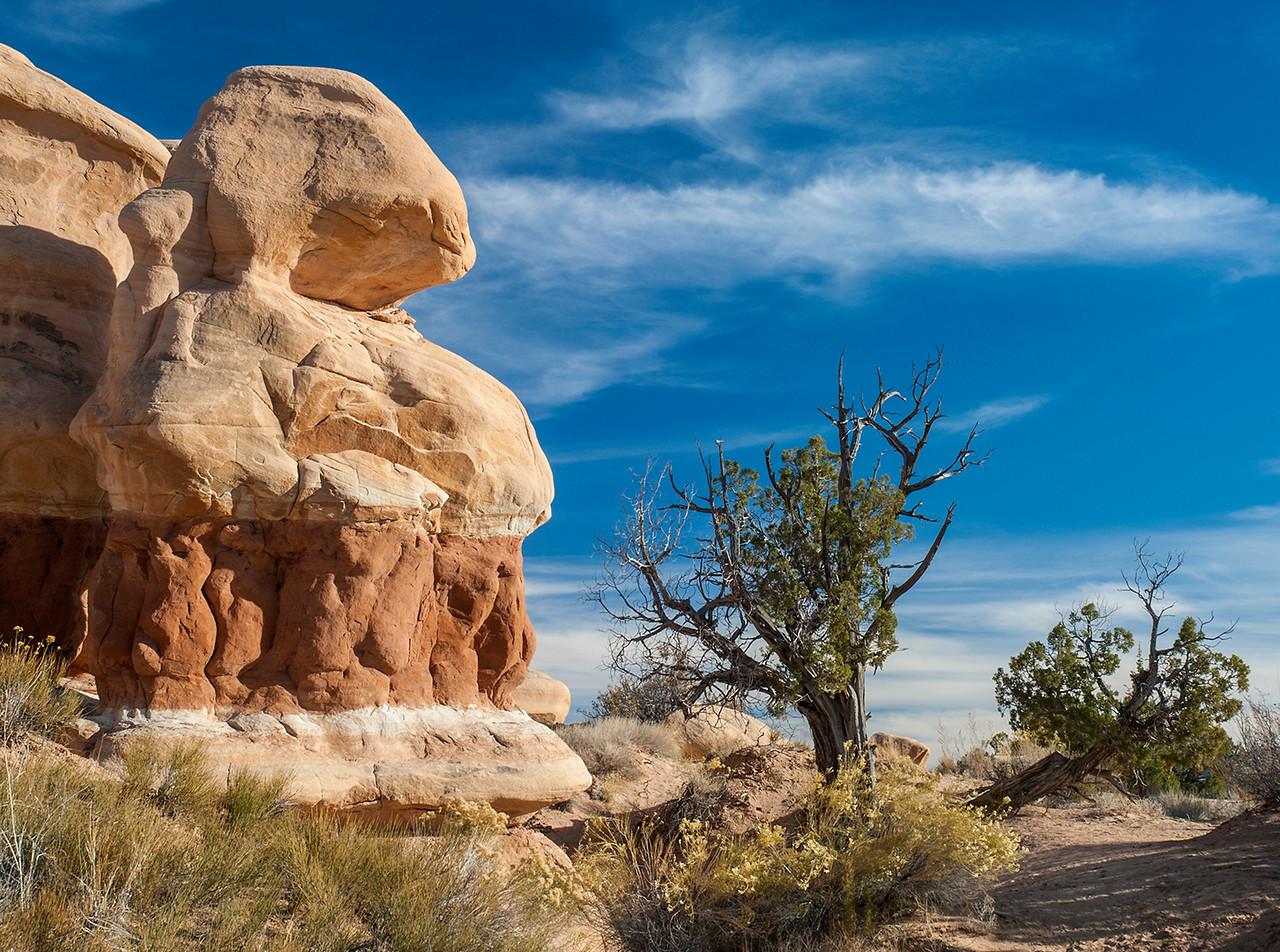 Rabbit shaped rock, Devil's Garden, Escalante, Utah