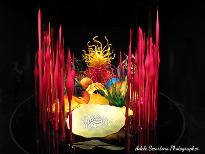 Chihuly Exhibit