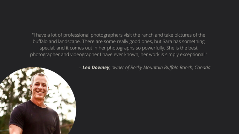 I have a lot of professional photographers visit the ranch and take pictures of the buffalo and landscape. There are some really good ones, but Sara has something special, and it comes out in her photographs so powerfully. She is the best photographer and