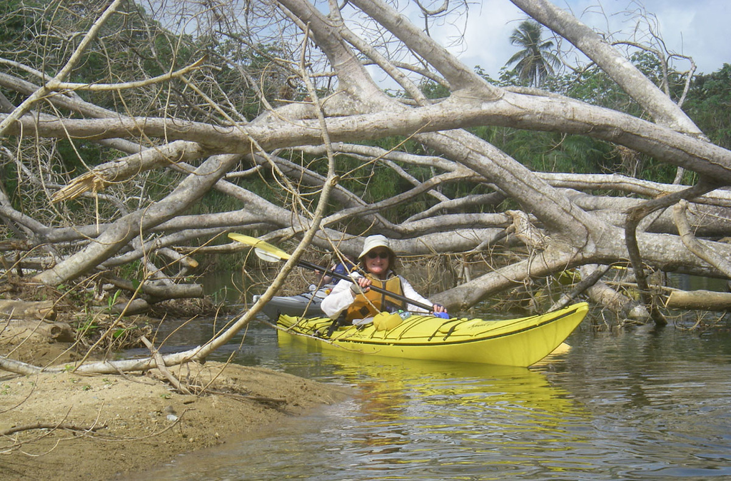 We did one layover day so we could paddle a few miles to the mainland and then paddle up the Rio Paloma.  The river has crocodiles as large as the kayaks, so we kept a tight formation, with everyone happy to be in the middle of the flotilla.