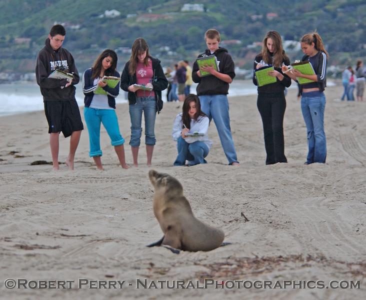 Malibu High biology students make a few notes at Zuma Beach.