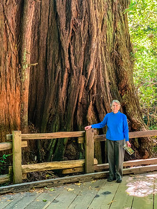 Diana in Muir Woods