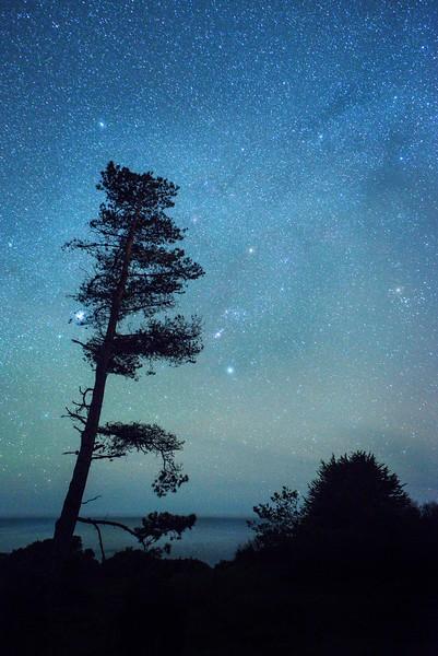 Evening Sky, Sea Ranch, California