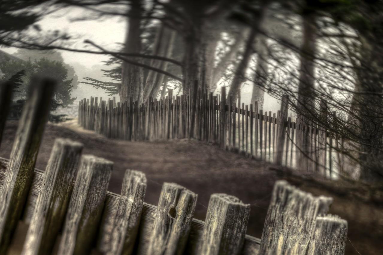 Split Rail Fence, Sea Ranch, California