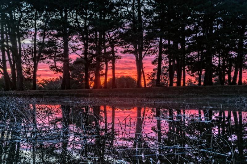 Sunset Pond, Sea Ranch, California