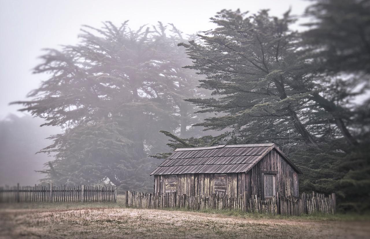 Sea Ranch Cabin, California