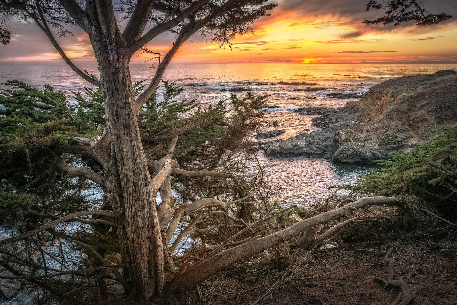 On the Edge, Sea Ranch, California