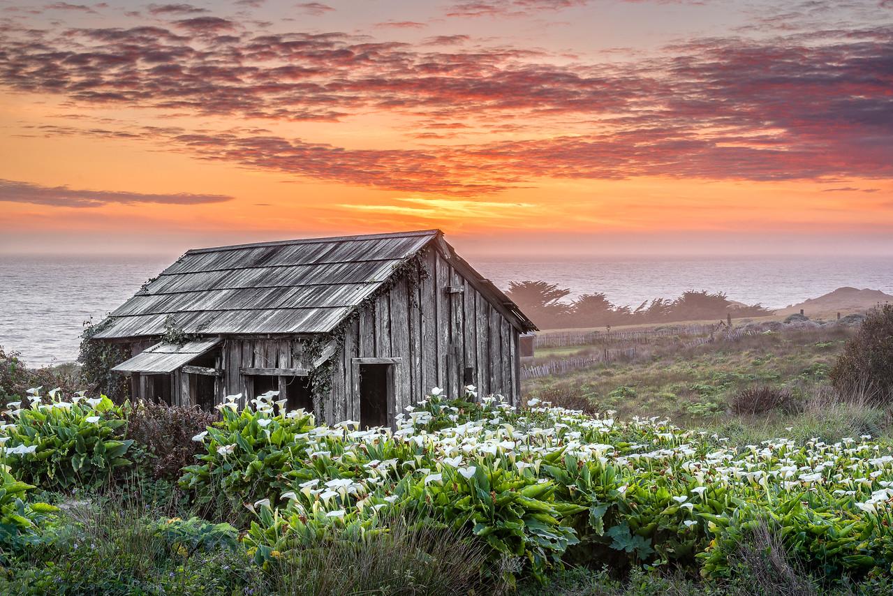 Sea Mist & Barn, Sea Ranch, California