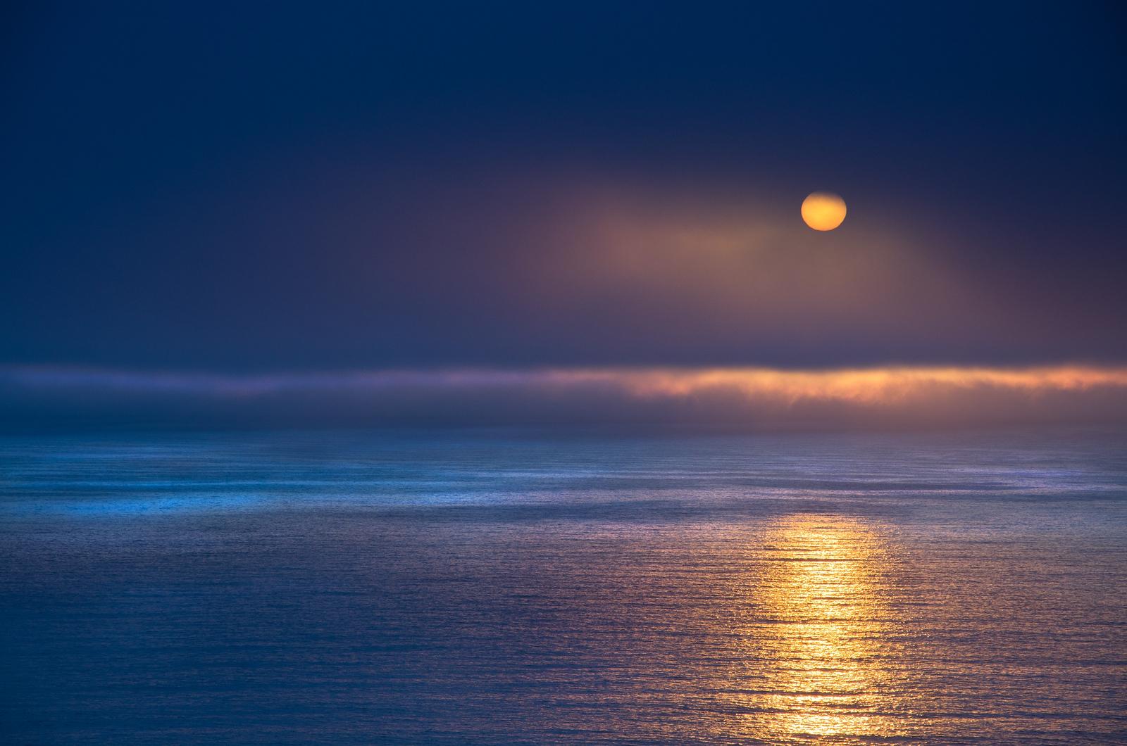 Golden Light, Sea Ranch, California